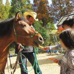 馬のエサやり体験