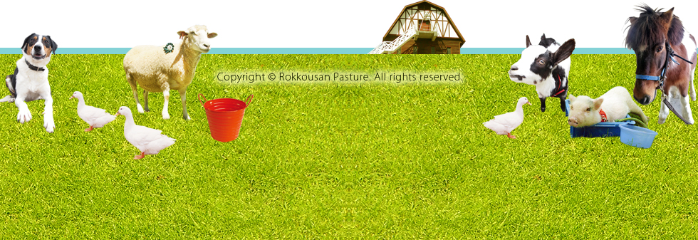 Copyright © Rokkousan Pasture All rights reserved.