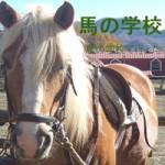 5/12 馬の学校開催!