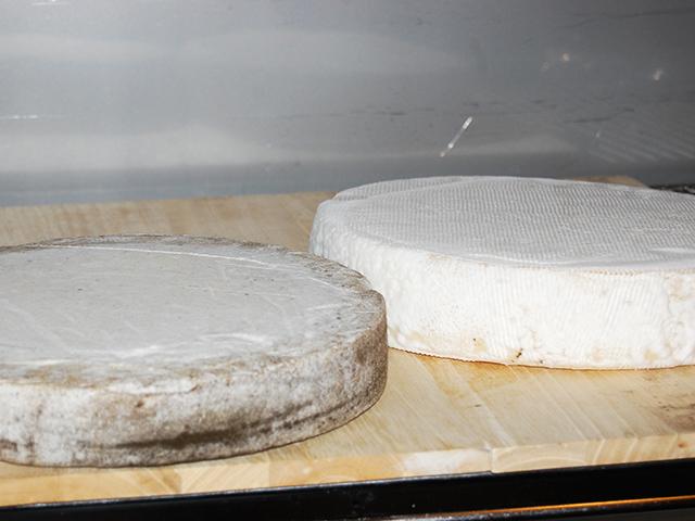 11月7日(土)~ 硬質チーズの限定販売! 終了